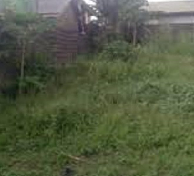 A fenced and gated plot of land measuring 520sqm