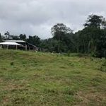 A parcel of land measuring 2,496.111sqm