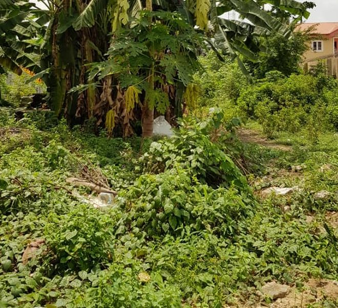 A bare land fenced and gated on a corner piece measuring 4,200sqm