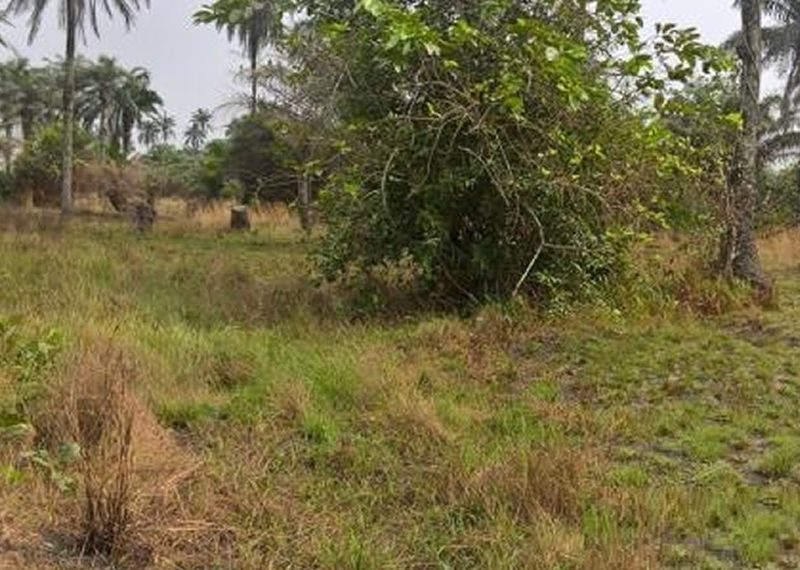 2 plots of land available for sale in Lagos, Ikorodu.