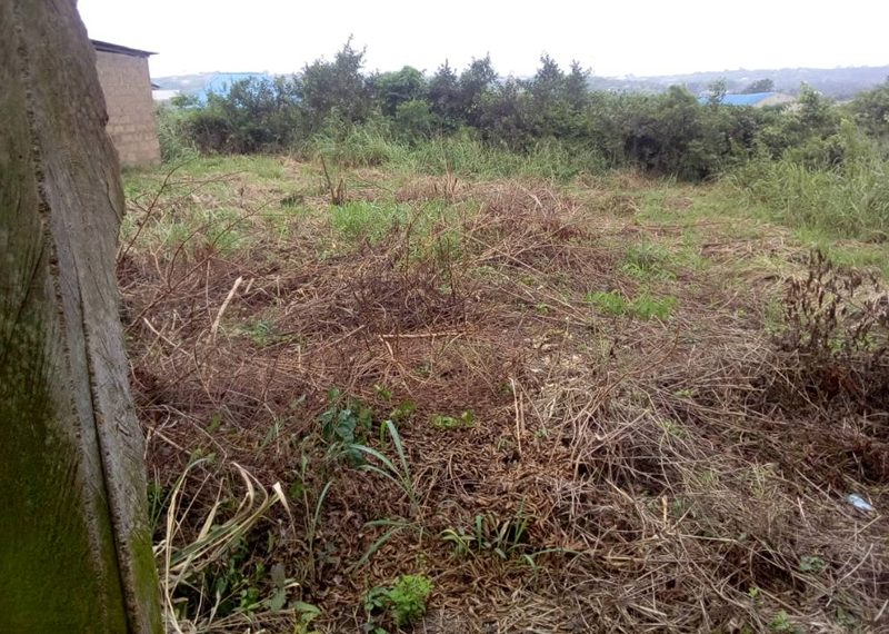 Two and half plots of land for sale in Lagos, Yaba Ebute Metta