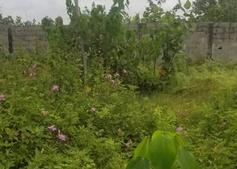 Bare land measuring 945sqm for sale in Lagos, Isolo, Ajao Estate
