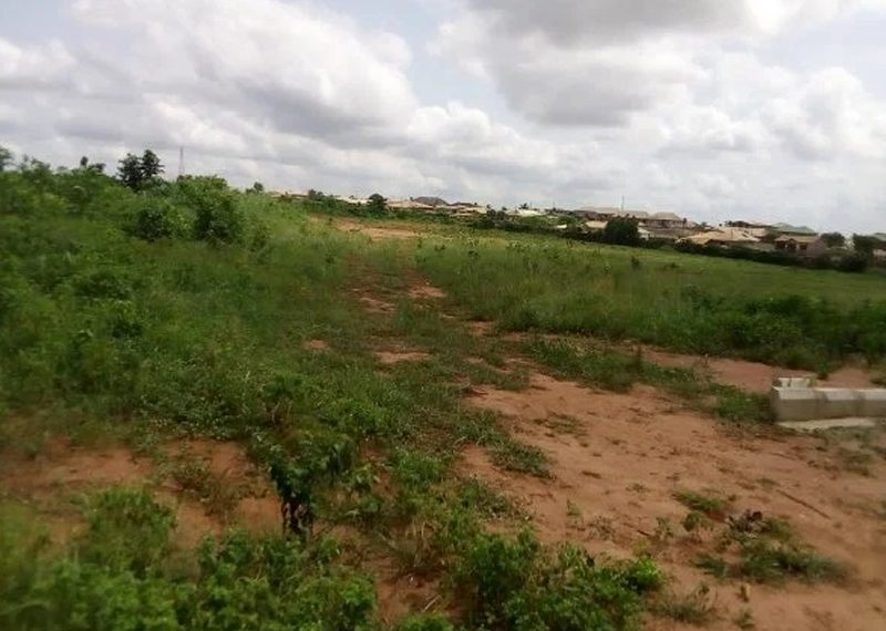 9.8 hectares of commercial land for sale in Abuja, Idu