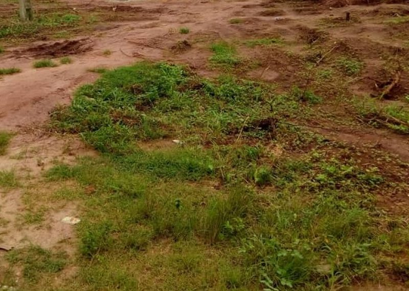 Land measuring 11,260sqm for sale in Ogun, Aseese