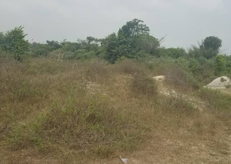 Residential land measuring 1,300sqm for sale in Lagos, Lekki Chevron