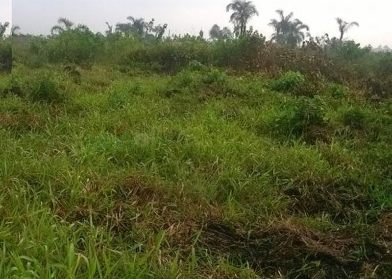 A plot of land measuring 951.380sqm for sale in Lagos, Lekki Phase 1
