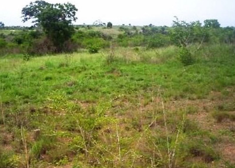 A plot of land measuring 963.700sqm for sale in Lagos, Lekki Phase 1